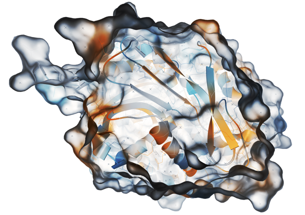 CAVER - software tool for protein analysis and visualization